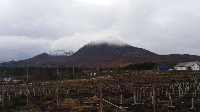 highlands em foto 3